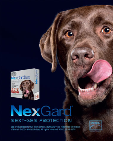 NexGard® Flea and Tick Tablets 2